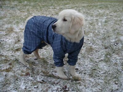 Нужно все же, одеваться по погоде.