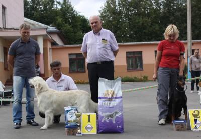 Лучший юниор выставки, первое место в 8 группе FCI, лучшая собака выставки.
