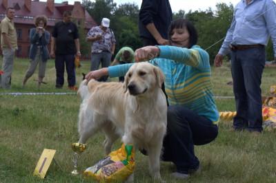 29 июня 2008 года, г. Брест. Лучший юниор Региональной выставки собак всех пород, клуб «АРГУС»