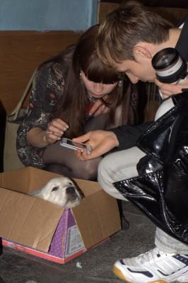 К ней подходила знакомиться известная дрессировщица и хозяйка гостиницы для животных-Полуян Алеся