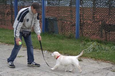 Со своим временным нянькой Пашей ходили на улицу. Дождь игре не помеха.