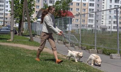 Как к всему окружающему относится, мне рассказывает дрессировщик и очень хороший человек Ольга.