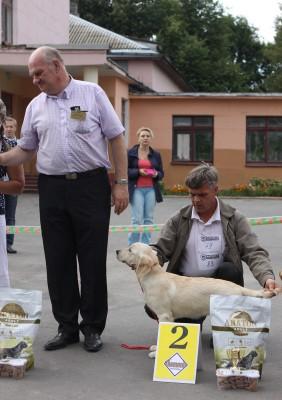 11 августа 2012 г. Руденск. Лучший беби породы, 2 место в расстановке за звание лучший беби выставки.