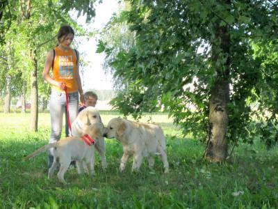 Как себя вести в обществе показали малышке Эрике, впервые появившейся в большой компании, Умка с Аришей.
