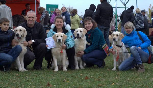 Собаки нашего питомника не только приняли активное участие в них, но и получили высокие оценки экспертов.