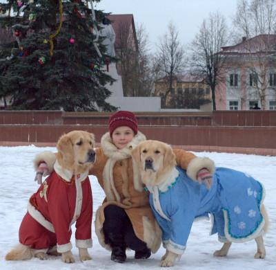С воспитанной собакой спокойно гулять, она дарит радость не только хозяевам, но и всем окружающим