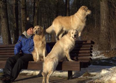 Поощряйте собаку, когда она делает то, что вам нравится, и журите, если не слушается
