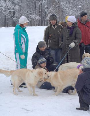 В непринужденной спокойной обстановке собаки общались друг с другом, а хозяева делились между собой секретами воспитания и выращивания домашних любимцев.