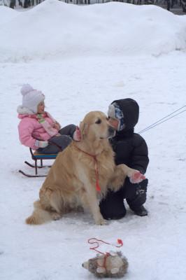 Ребенок хочет сфотографироваться с собакой? Тогда Кеша спешит туда!