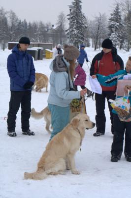 Кристину и ее собаку Золотой Охотник Билли Бойс