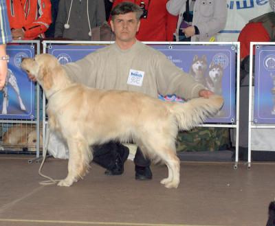 Золотой Охотник Ариадна Астерион (Беларусь) - отлично, 5-е место