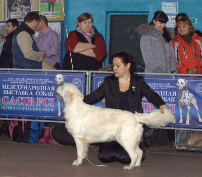 Еввива Каролина Вланти Делимар (Беларусь) - отлично  4 место