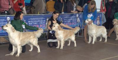 (слева направо):Dewmist Silvestro, RIERA ANGELO SUAVE (Россия), RITZILYN MATCH POINT Санкт-Петербург (Россия)