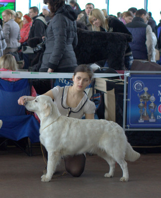 Новелла Ла Белла из Долины Солнца (Россия) - отлично 2 место