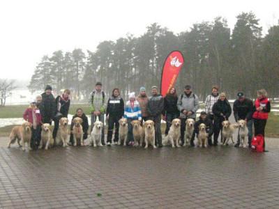 Под таким девизом в нашем питомнике прошли занятия по подготовке собаки к выставке по экстерьерным качествам и основам хэндлинга (показа собаки в ринге).