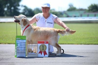 22 июня 2013- лучший щенок монопородной выставки