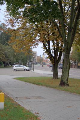 экскурсию по достопримечательностям центральной части Белостока.