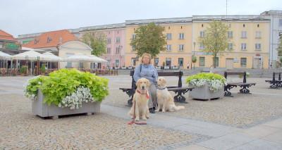Исторический центр города – это так называемый Рынок Костюшко – треугольная площадь, сложившаяся в XVIII в.