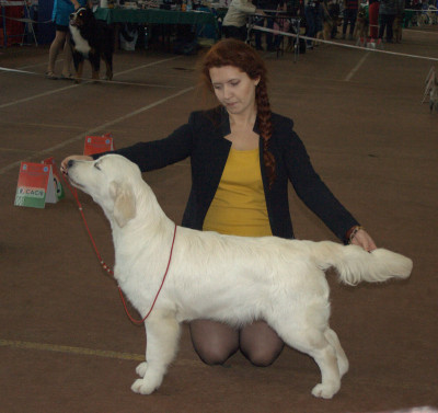 SKANDI SANRAIZ GEKATA FOR ANGELONATO (Беларусь) - большая перспектива, Лучшая щенок сука