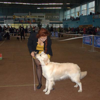 NINKA IZ LESNOGO GORODKA (Беларусь)- отлично 1 место, JСАС, лучшая сука юниор.