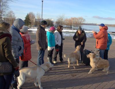 Большую помощь в показе собак нашего питомника на выставках оказала хэндлер Гудович Татьяна.