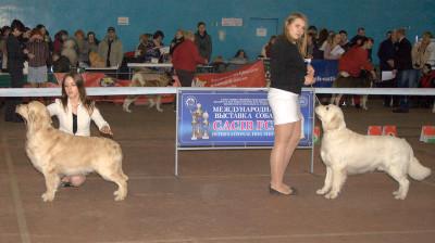 Слева направо: CENTER OF MY LIFE IZ DOLINY COLNCA (Россия), RIERA CERTERO SALVADOR (Россия)