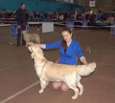 KANTRI GOLD SHARADA RUS (Россия) - отлично 2 место- отлично 1 место САС