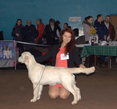 Анжелонато Овацион Селебрити (Беларусь)- большая перспектива, лучшая щенок сука, лучший щенок породы