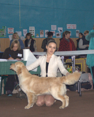 RIERA AMORE MIA DOLINA COLNCA (Россия)- отлично 1 место, САС