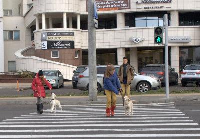 Учимся правильно переходить дорогу