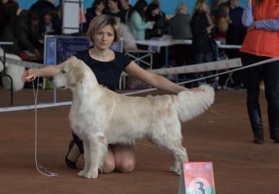 Райт Хантер Май Супер Хироу (Russia)– оценка отлично, 4 место