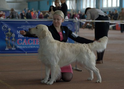 FERNFLOWER ALIVE LEGEND (Russia) (Belarus) – оценка отлично, 2 место