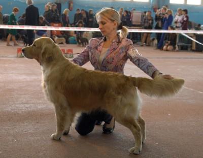ANRI DE SAR (Russia) – оценка отлично, 2 место