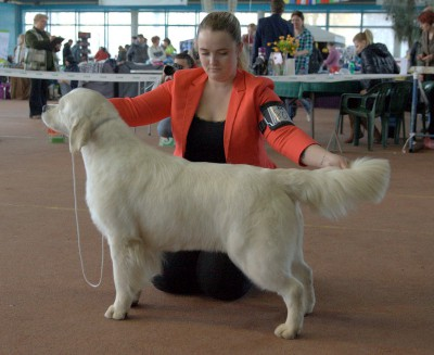 AMANSI BAVARIYA (Russia) - оценка отлично, 2 место