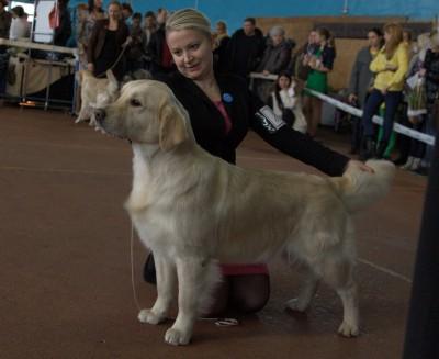 FERNFLOWER ARCTIC FOX (Russia)– оценка отлично, 1 место,CAC, CACIB
