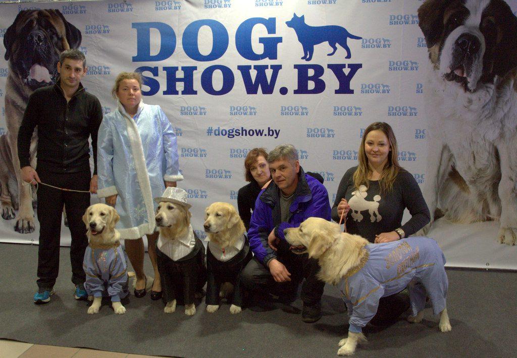 Zolotoy Ohotnik dog show.by