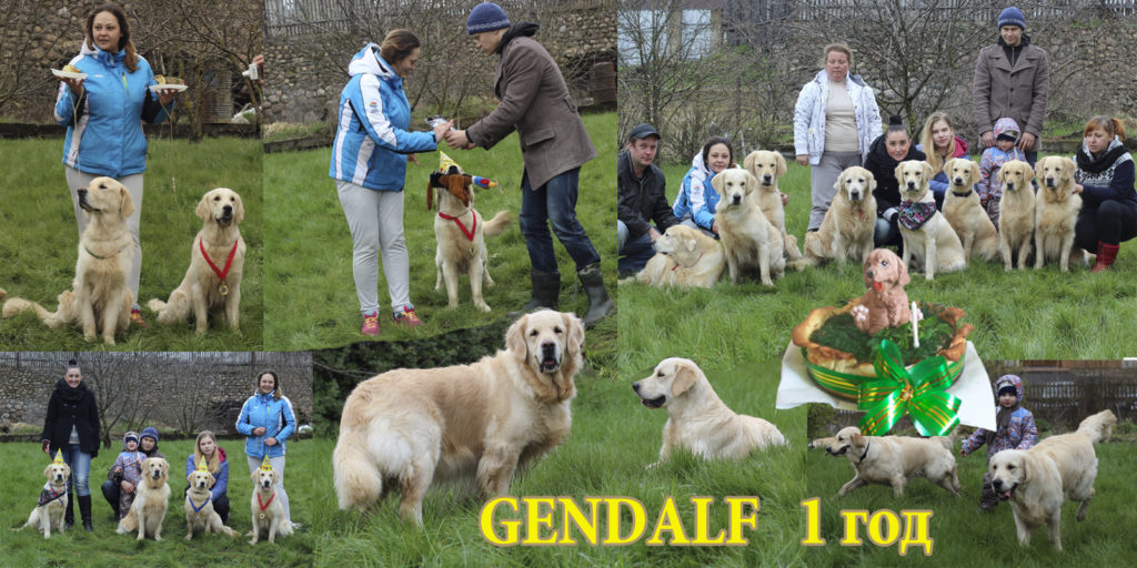heppy birthday gendalf