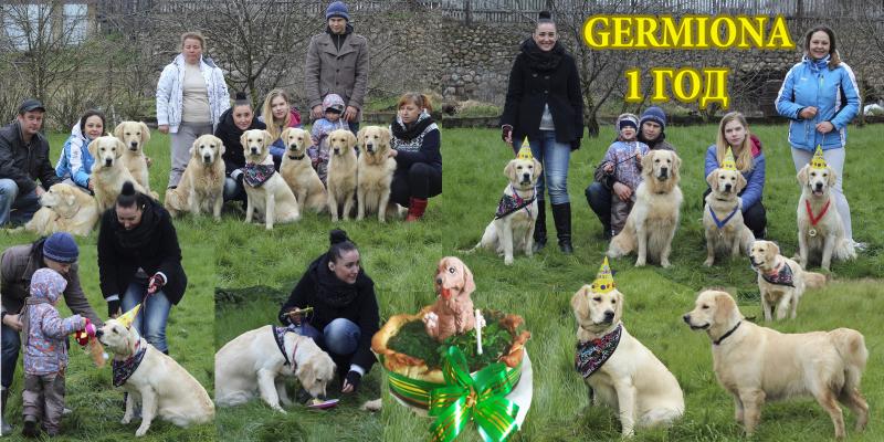 heppy birthday germiona